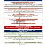 Esquema Rápido: Acceso a las Jubilación Anticipada (Ley Nueva)